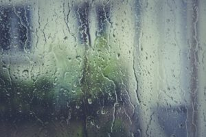 Moisture Protection Concerns: The Effects of High Humidity
